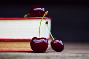 Wissen trägt Früchte